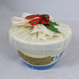 Cornish Blue Christmas Pudding