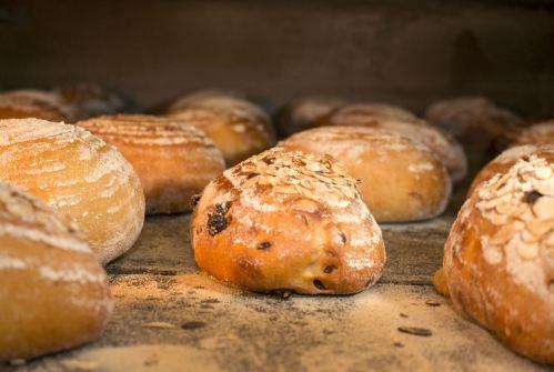 Dunn's Bakery, Crouch End, Freshly Baked Bread
